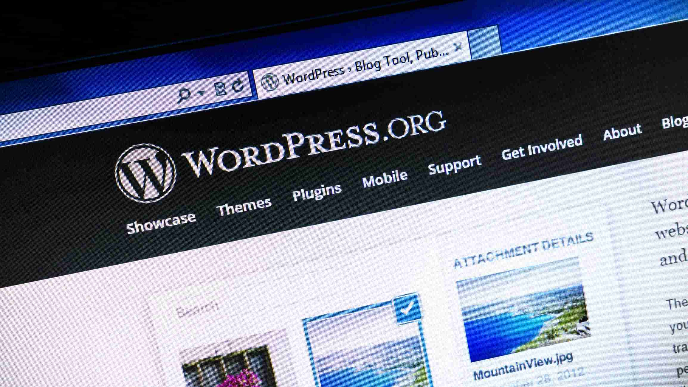 What Is a WordPress Website?
